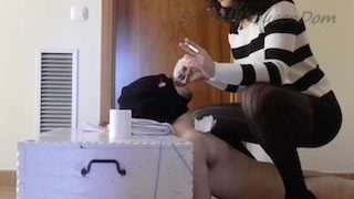 Mistress pooping in human toilet mouth making him swallow that shit xxx porn video